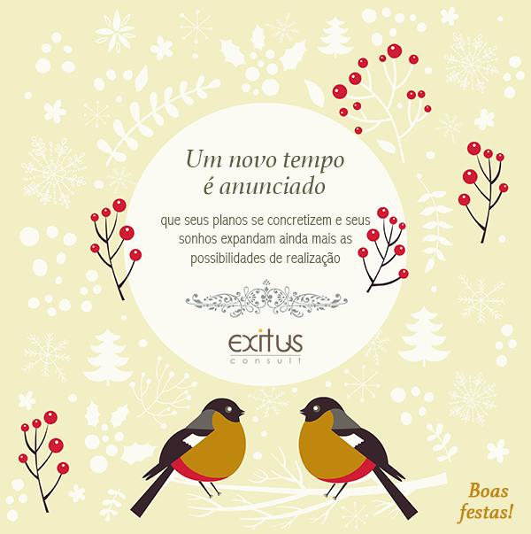 consultoria-empresarial-exitus-bauru-natal-2014